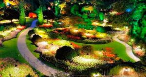 Как выбрать освещение для сада