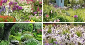 Лучшие образцы ландшафтного дизайна от Королевского садового общества Великобритании. Фото