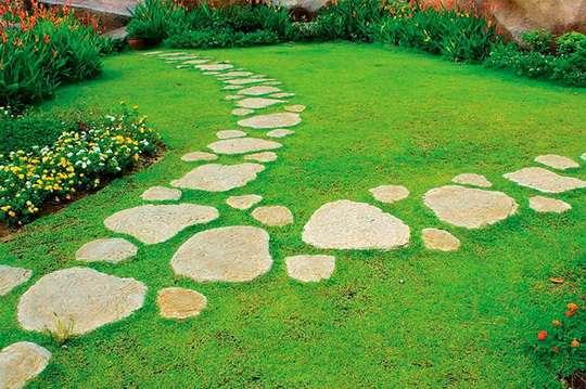 Самые красивые шаговые дорожки на садовом участке. Фото