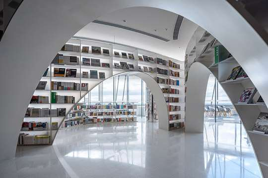 Книги вознесут над облаками